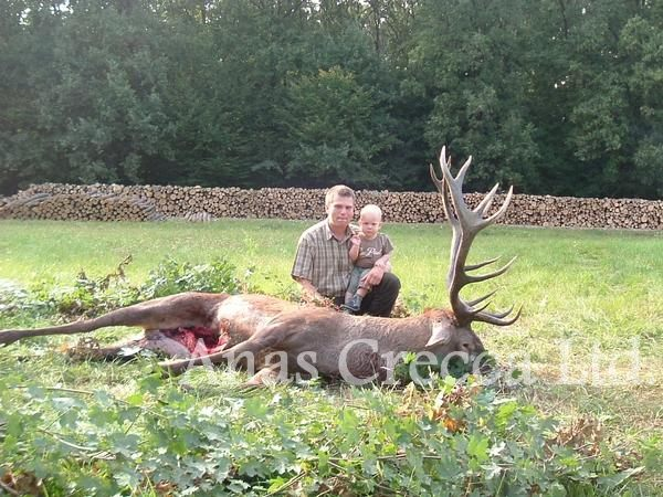 red_stag_hunting_in_hungary_15.jpg